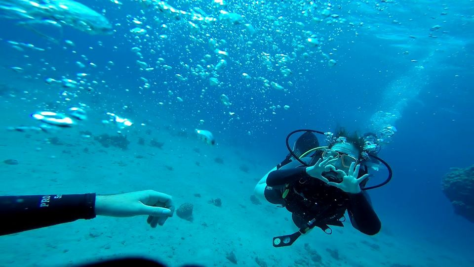 Maria Perov scuba diving