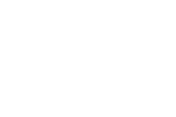Lynx-Games (1)